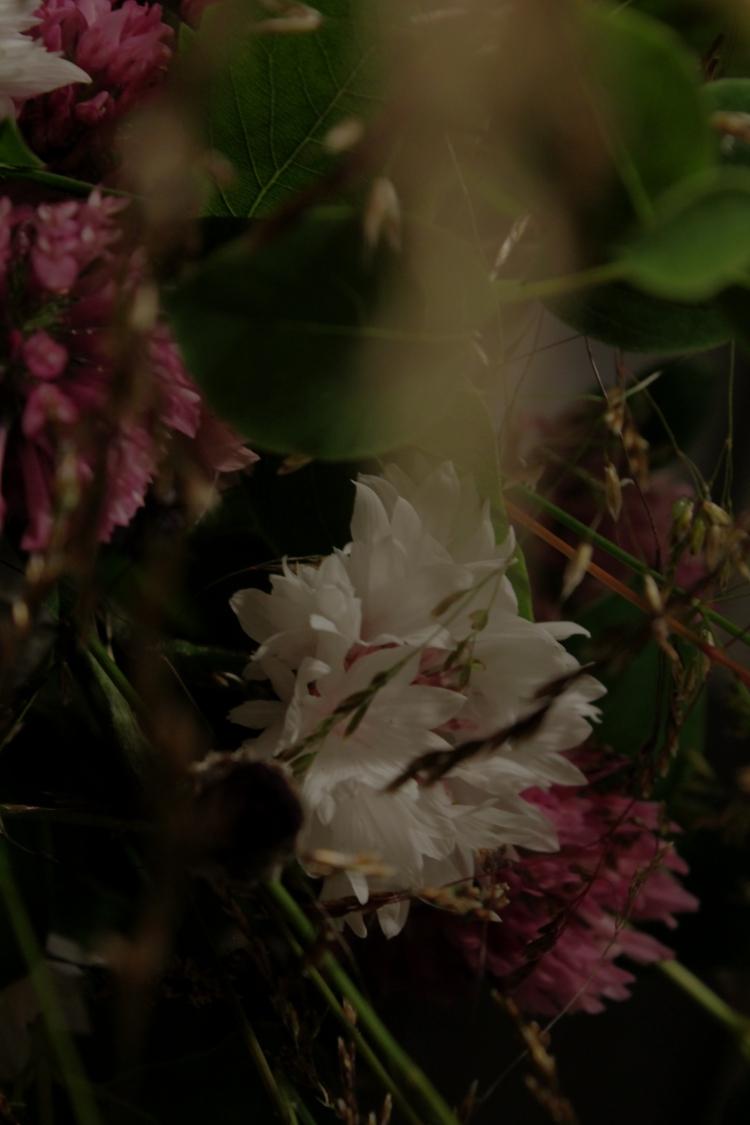 blommor12